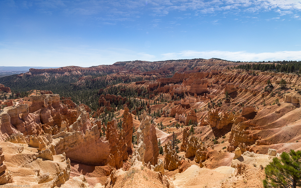 Amphithéatre depuis Sunrise Point, Bryce Canyon