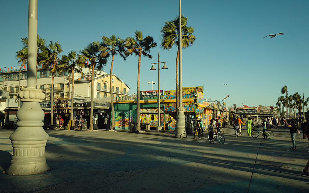 The Venice Beach Boardwalk